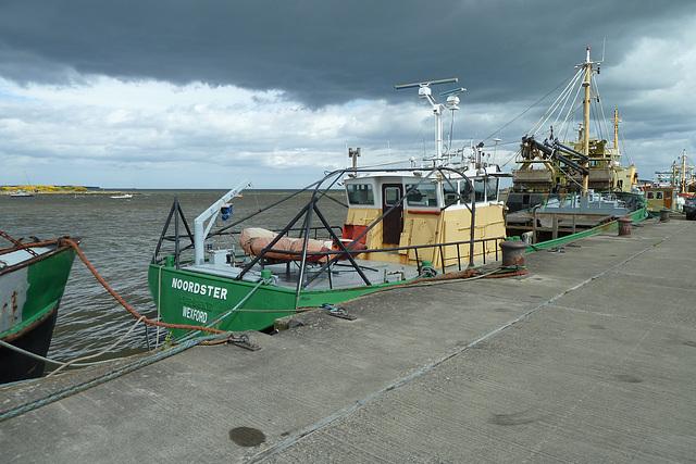 Wexford 2013 – Noordster