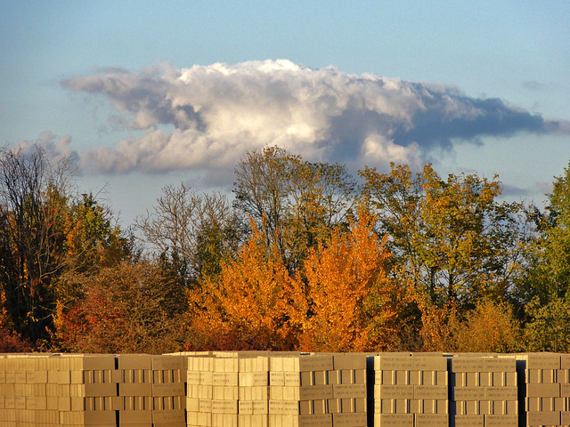 parpaings, bosquet et nuage...