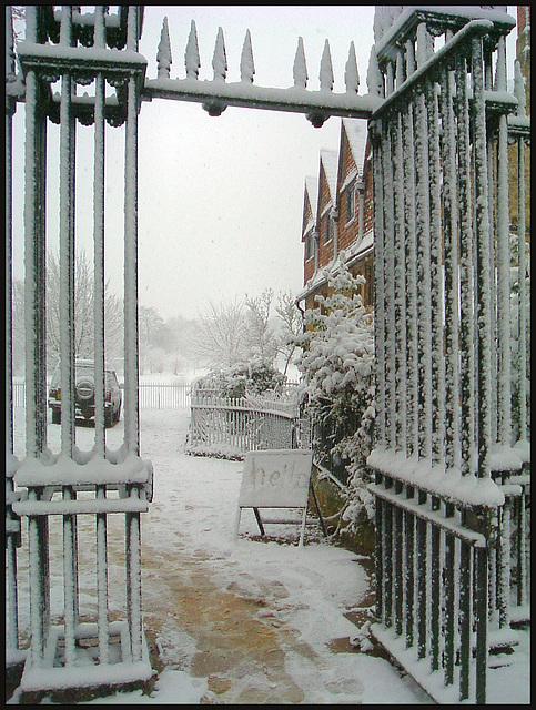 snowy hello