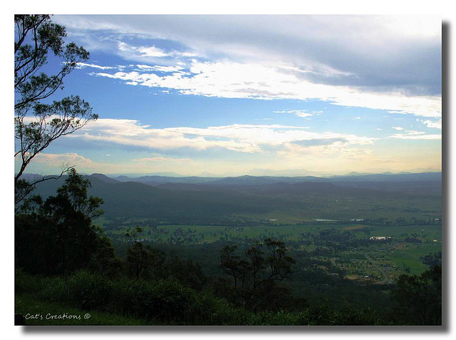 Timeless, Late Afternoon Tamborine National Park, Queensland, Australia