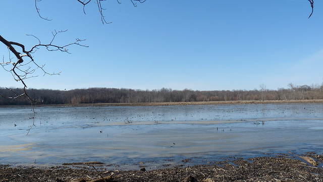 Oxbow Lake Nature Preserve