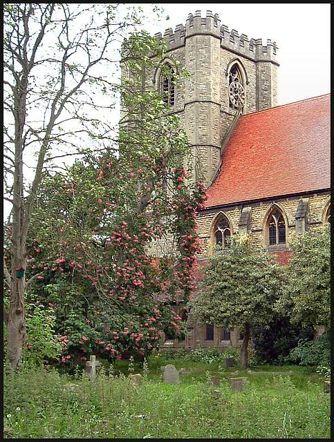 spring rain in the churchyard