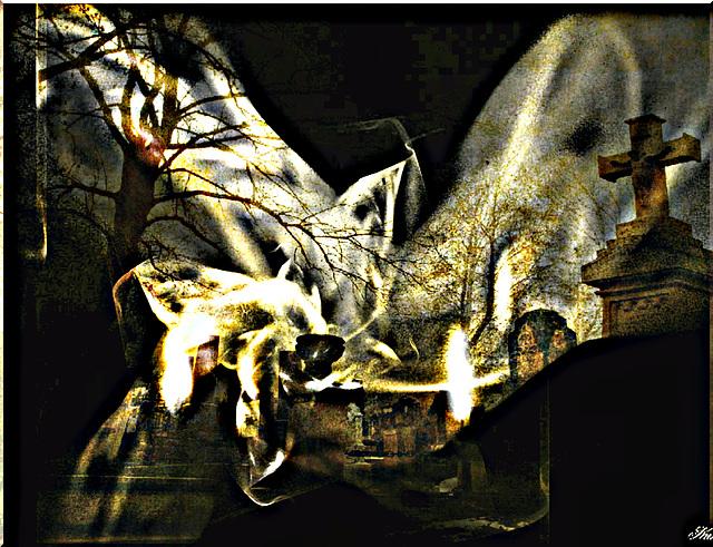 La musique est un cri ..........qui vient ....de l'intérieur