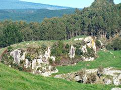 South Waikato country