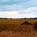 marschland-1180321-co-02-03-14