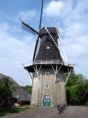 Nederland - Eenrum, De Lelie