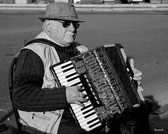 l'accordéon du Tréport