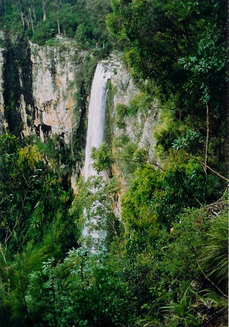 Purlingbrook Falls, Springbrook, Queensland, Australia
