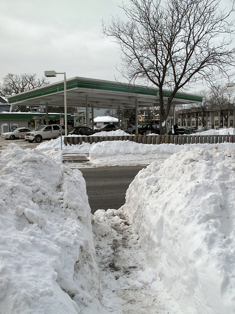 Footpath to B.P. sta., in Mpls., post- Blizzard of '10.