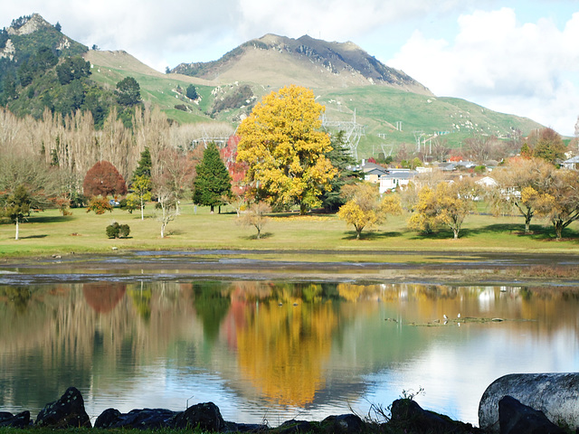Reflections in Lake Whakamaru