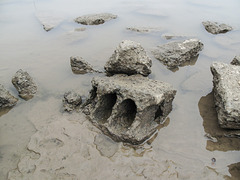 Crazey-shaped Ohio River cinderblock.