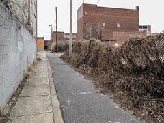 Philadelphia's own Bodine Street.