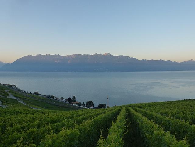 la Savoie et le Léman à l'aube