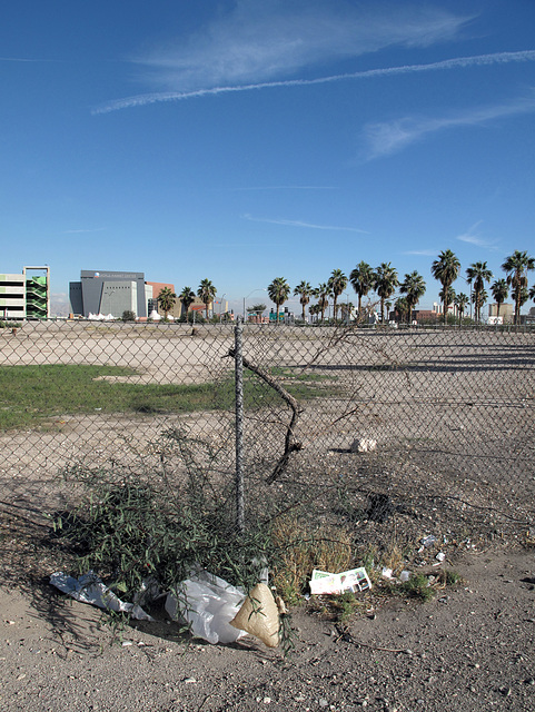 Desertification process & palmtree scene, w/ poofing-upness of some sacks somebody littered & wild contrails.