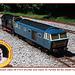 Eastbourne Miniature Steam Railway BR class 08 & Hymek 1 8 2013