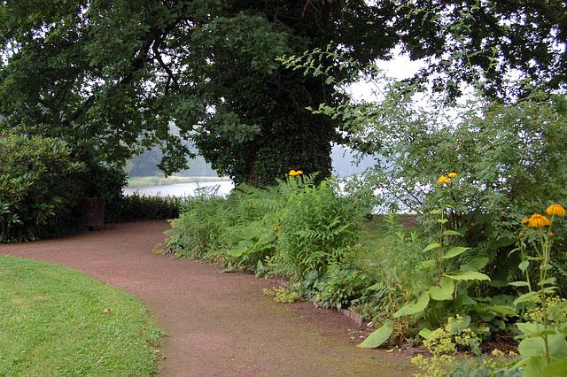 Rozinsulo: vojo kun herbejo, arbo kaj lago (Roseninsel: Weg mit Wiese, Baum und See)