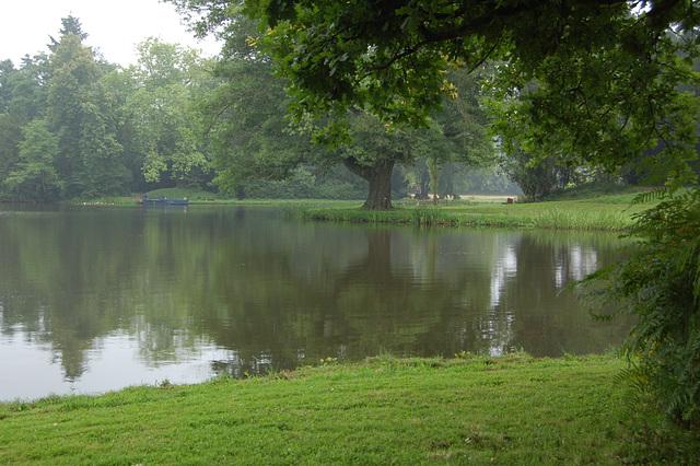 Rigardo al la telaŭba pramo  (Blick zur Teelaubenfähre)