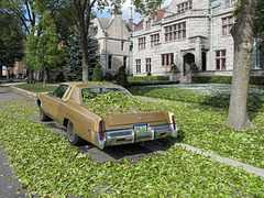 The Imperial got dumped on pretty hard while it was parked outside the mansion.