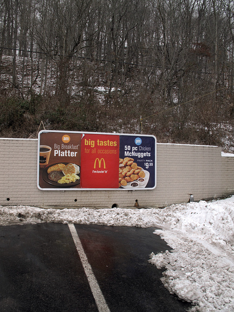 50 wet McNuggets and old sausage patties and dirty scrambled eggs, strewn among the undergrowth of a snowy hillside in dreary southeastern Ohio, 3 days pre-xmas.