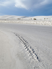 Tire tracks 'spinal column' of White Sands.