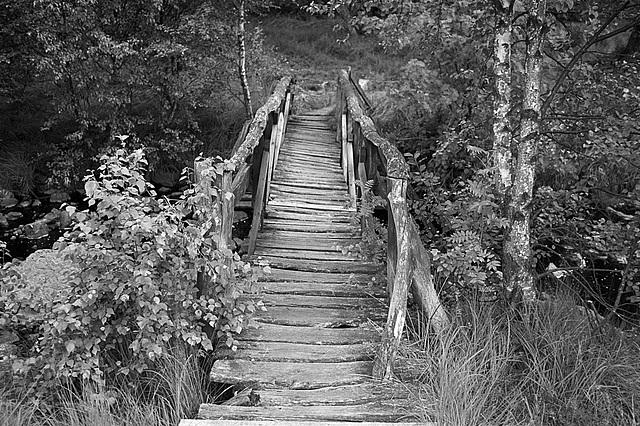 budging bridge