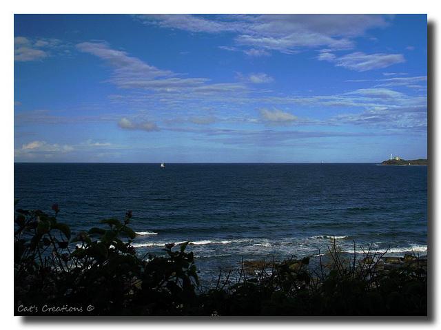 View from Alexandra Headland, Queensland, Australia