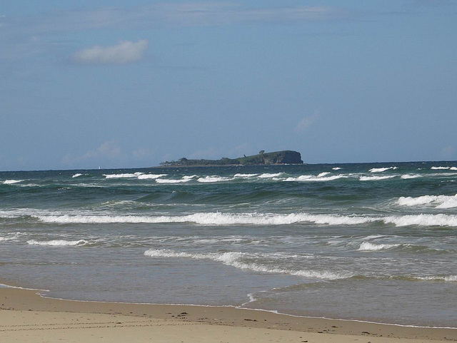 Mudjimba (Old Woman Island), Queensland, Australia