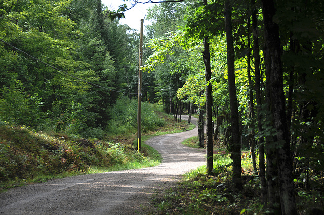 Cottage road
