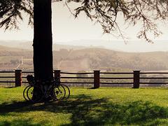 in bici a Grinzane Cavour