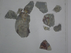 Sirmium : fresque de Bacchus ?