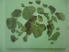 Sirmium : fresque de Méduse.