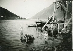 (460) Arild Yttergård og Åse Marie (Yttergård) Hjertø