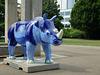 Go! Rhinos_064 - 8 August 2013