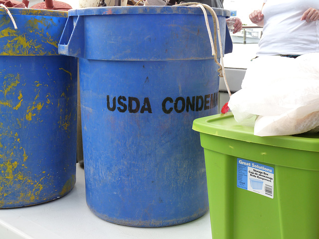 USDA condemned!