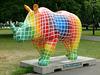 Go! Rhinos_068 - 8 August 2013