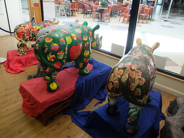 Go! Rhinos_071 - 8 August 2013