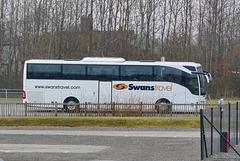 Swans Travel