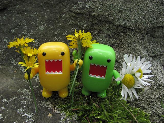 Domos bearing flowers...