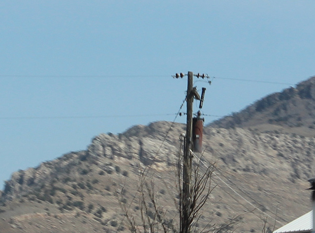 Lost River Electric 12.47kV - Arco, ID