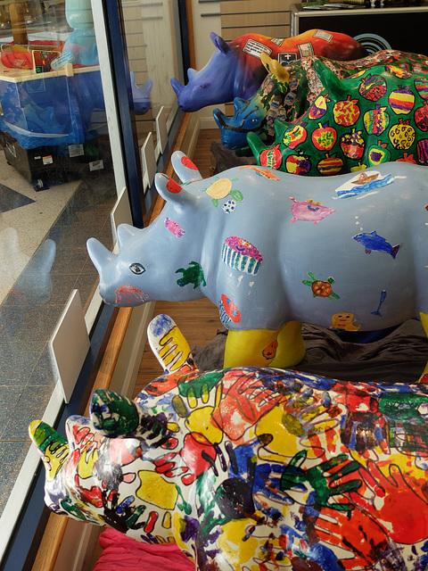 Go! Rhinos_073 - 8 August 2013