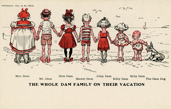 The Whole Dam Family on Their Vacation