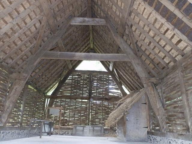 coamam (1148)