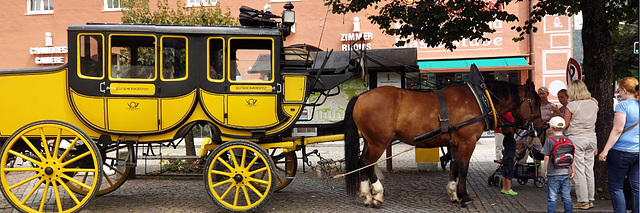 yellow carriage 1