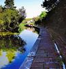 Leeds-Liverpool canal at Foulridge.
