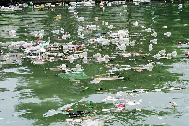 After Monet, Canal Saint Denis, Paris, 11 July 2013