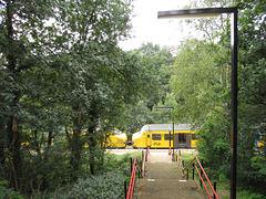 De trap van Rhenen/Rinse