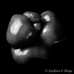 Bell Pepper b&w 082113-1 - First attempt to follow in the footsteps of Edward Weston and his black and white pepper photography.