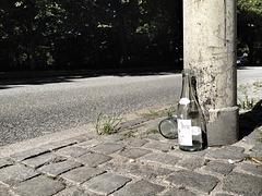 Bottle trash