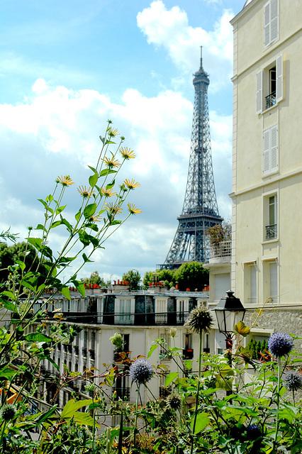 Paris sur champs