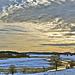 P1080101- Prairie inondée